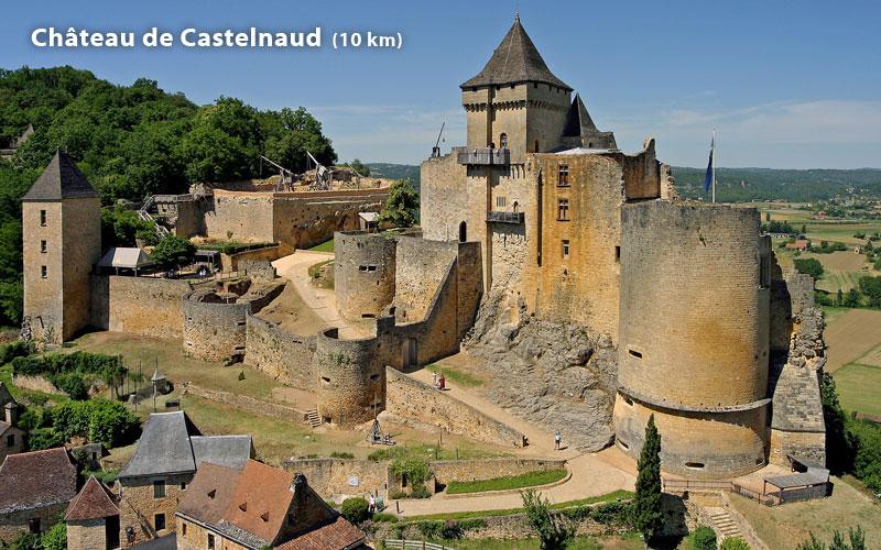 Château de Castelanud