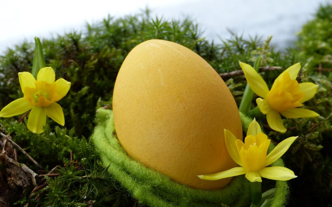 Tradition pour Pâques, la chasse aux œufs à Marqueyssac
